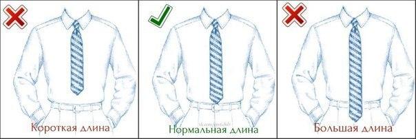 Длина классического мужского галстука