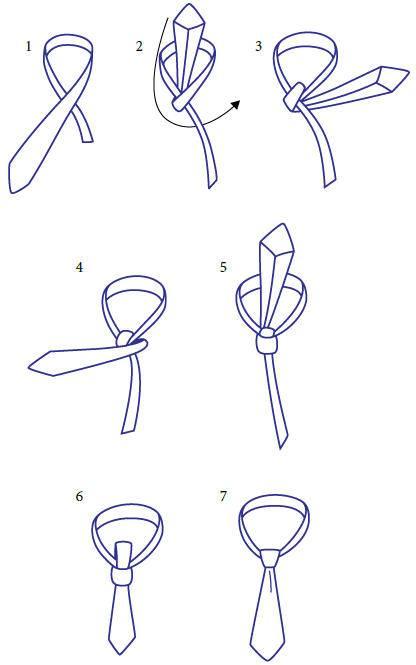 Как правильно завязать галстук пошаговые фото и видеоинструкции