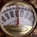 Факторы влияющие на мужское здоровье - питание, стрессы и окружающая среда